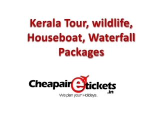 Christmas Holiday and Houseboat Tour Packages for Kerala