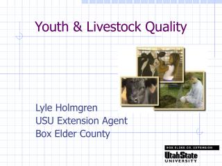 Youth & Livestock Quality