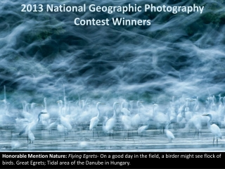 2013 National Geographic Photography Contest Winners
