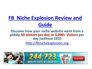 Fb  niche explosion review, guide and bonus