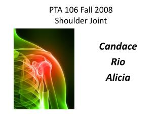 PTA 106 Fall 2008 Shoulder Joint