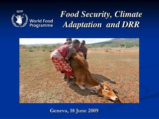 Food Security, Climate Adaptation  and DRR