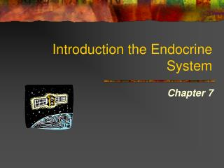 Introduction the Endocrine System