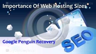 Importance Of Web Hosting Sizes