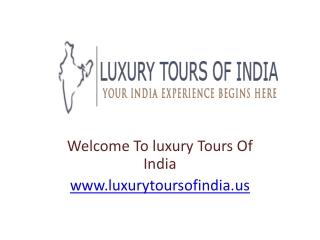 Luxury Tours India