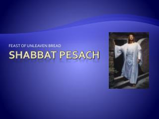 Shabbat pesach