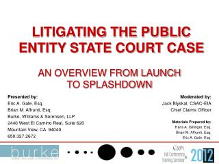 LITIGATING THE PUBLIC ENTITY STATE COURT CASE