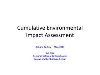 Cumulative Environmental Impact Assessment