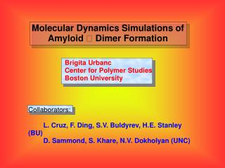 Molecular Dynamics Simulations of Amyloid  Dimer Formation