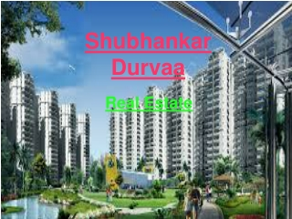 1 bhk flats in dhanori