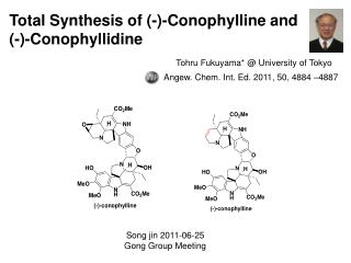 Total Synthesis of (-)-Conophylline and  (-)-Conophyllidine