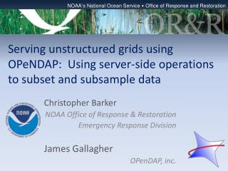 Serving unstructured grids using  OPeNDAP :  Using server-side operations to subset and subsample data