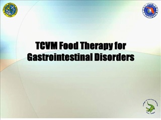 tcvm food therapy for gastrointestinal disorders