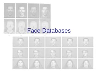 Face Databases