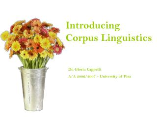 What is a CORPUS?