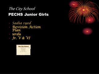 The City School PECHS Junior Girls