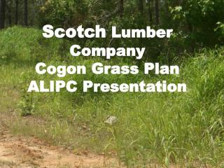 Scotch  Lumber Company Cogon Grass Plan ALIPC Presentation