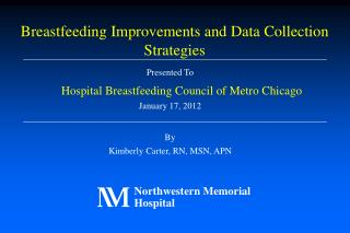 Presented To Hospital Breastfeeding Council of Metro Chicago January 17, 2012 By Kimberly Carter, RN, MSN, APN