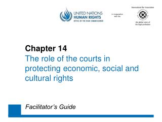 Chapter 14 The role of the courts  in 	protecting 	economic , social  and 	cultural  rights