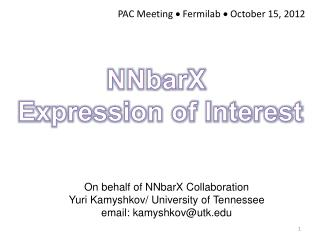 On behalf of NNbarX Collaboration Yuri Kamyshkov