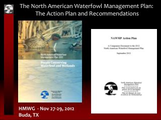 The North American Waterfowl Management Plan: The Action Plan and Recommendations