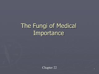 The Fungi of Medical Importance