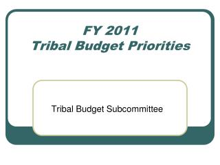FY 2011 Tribal Budget Priorities