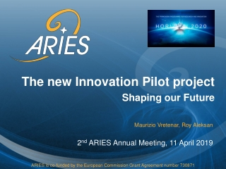 The new Innovation Pilot project Shaping our Future