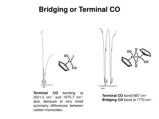 Bridging or Terminal CO