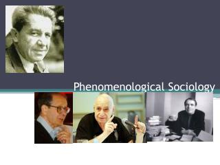 Phenomenological Sociology
