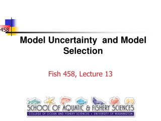 Model Uncertainty  and Model Selection