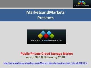 Public/Private Cloud Storage Market Report