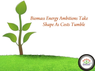 Biomass Energy Ambition Take Shape As Costs Tumble