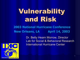 Vulnerability and Risk