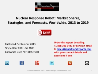 Forecasts 2013 to 2019 : Market strategies for Nuclear Respo