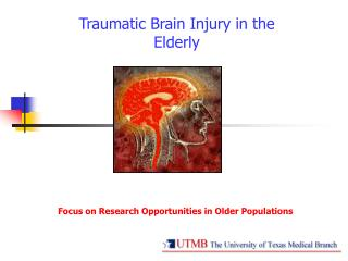 Traumatic Brain Injury in the Elderly