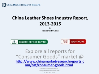 Leather Shoes Market in China