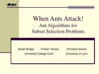 When Ants Attack! Ant Algorithms for  Subset Selection Problems