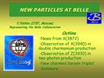 NEW PARTICLES AT BELLE