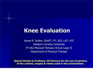 knee evaluation
