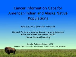 Cancer Information Gaps for American Indian and Alaska Native Populations
