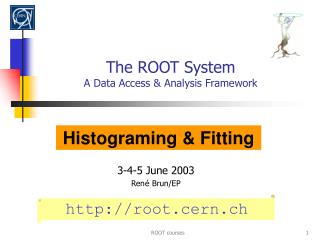 The ROOT System A Data Access  Analysis Framework