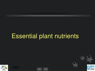 Essential plant nutrients