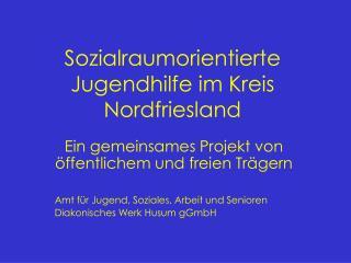 Sozialraumorientierte Jugendhilfe im Kreis Nordfriesland