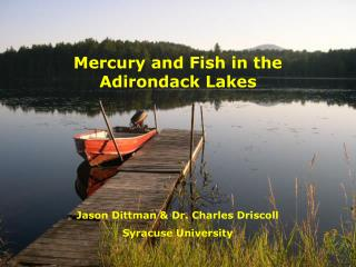 Mercury and Fish in the Adirondack Lakes
