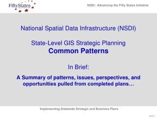 National Spatial Data Infrastructure (NSDI)  State-Level GIS Strategic Planning Common Patterns In Brief: