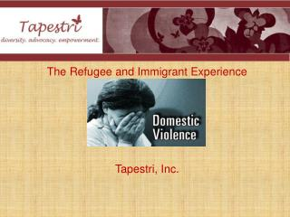 Domestic Violence The Refugee and Immigrant Experience Tapestri, Inc.