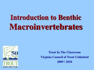 Introduction to Benthic  Macroinvertebrates