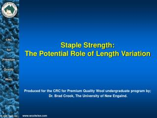 Staple Strength: The Potential Role of Length Variation