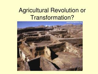 Agricultural Revolution or Transformation?